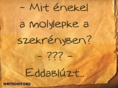 EddaBlúz.