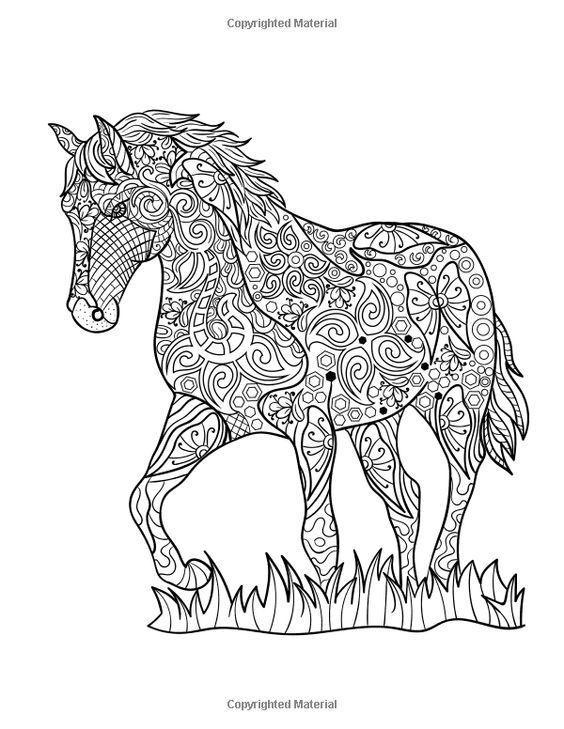 Pin van Barbara op coloring horse, zebra in 2020 (met ...