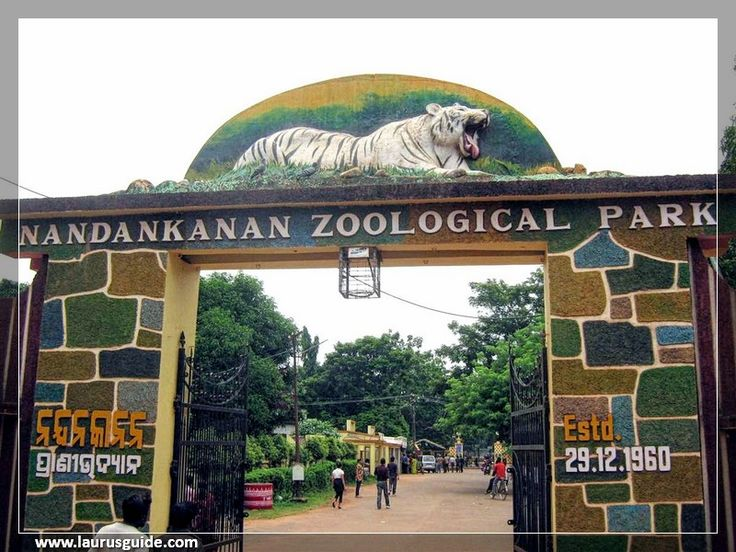 Nandankanan Zoological Park is a 400-hectare (990-acre) zoo and botanical garden in Bhubaneswar, Odisha, India. Established in 1960, it was opened to the public in 1979 and became the first zoo in India to join World Association of Zoos and Aquariums (WAZA) in 2009. It also contains a botanical garden and part of it has been declared a sanctuary. Nandankanan, literally meaning The Garden of Heavens, is located near the capital city, Bhubaneswar, in the environs of the Chandaka forest.
