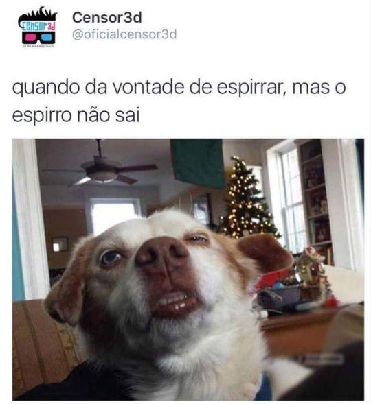 Comédia Brasil