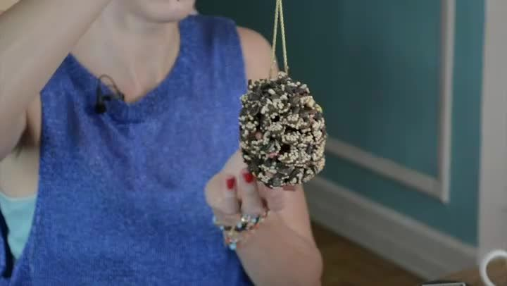 Video: How to Make Birdseed Pinecones