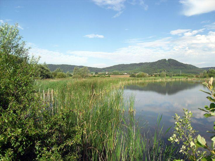 Le #Montsec fait partie du Parc Naturel Régional de Lorraine. Lieu où se mèle #Histoire avec la butte du #Montsec, #Nature avec une #Faune et une #Flore débordante, #Tourisme et #Activités avec le Lac de Madine et gastronomie avec ses vins et fruits des Côtes de #Meuse, comme évidement la Mirabelle de Lorraine. Crédit photo : CDT Meuse
