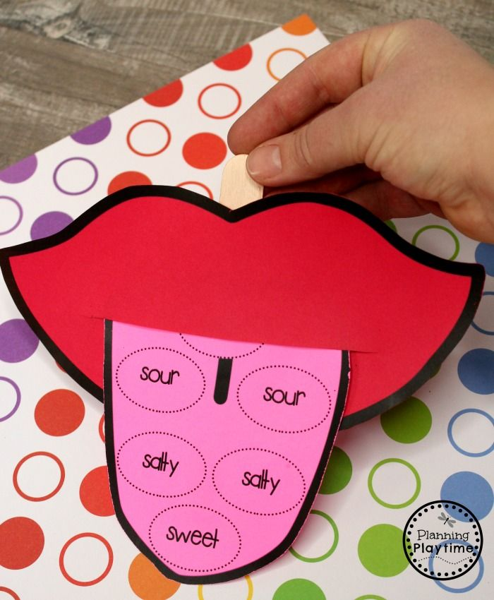 5 Senses | Senses preschool, Five senses preschool, Body ...