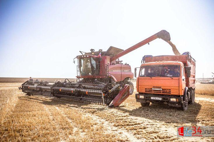 Уборка урожая и посев озимых культур ведется по графику https://l34.news/2016/09/uborka-urozhaya-i-posev-ozimy-h-kul-tur-vedetsya-po-grafiku/  А теперь о хороших новостях с полей Волгоградского региона, где на данный момент ведутся работы по уборке урожая и посеву озимых культур. Уже сейчас сельхозпроизводители региона посеяли порядка 371 тысячи га озимых культур. Больше всего на полях пшеницы — пока площади посевов составляют более 355 тысяч га. Также земледельцы сеют рожь, тритикале…