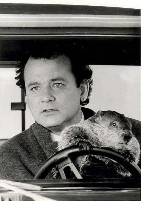 Groundhog Day has to be one of the best Christmas movies  ever!