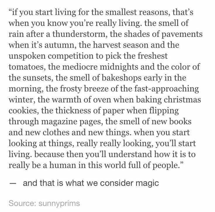 Stop looking for a bigger picture and start appreciating little things around you and thats how you realized you are having your Life