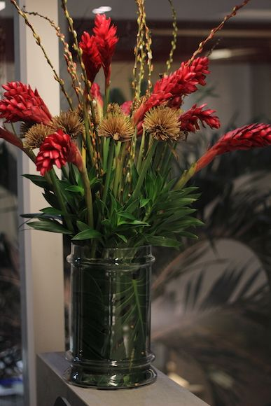 Arranjo de flores tropicais Alpinea, unha de gato