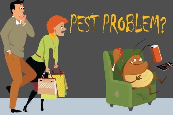 Pest control - Bye Bye Pests – Hello Clean, Pest-Free Home!