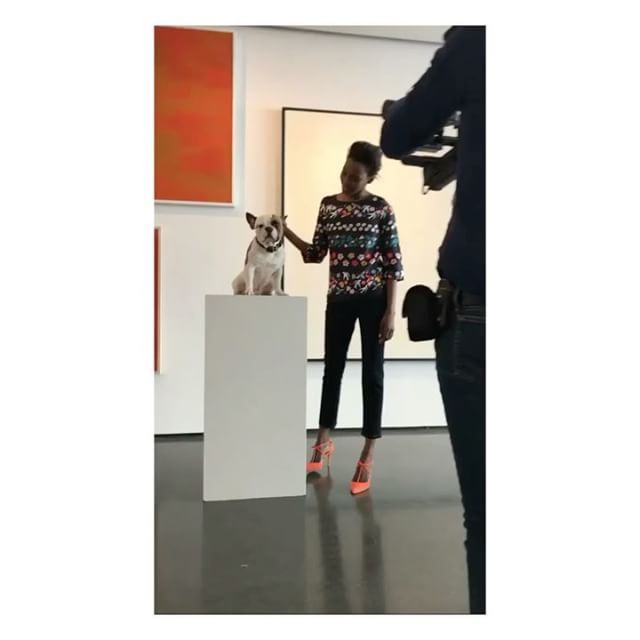 Behind the scenes at the @boden_clothing photoshoot with @kainewman1 #frenchbulldog #frenchie #piedfrenchie #pied #bulldog #frenchiepuppy #batpig #cute #dog #dogsofinstagram #instagram #dogsofinstagram @dogsofinstagram #batears #piedfrenchbulldog #piedbulldog #squishynose #frenchiesofinstagram #instadog #instapuppy #instafrenchie #frenchiepuppy #frenchiepuppies @instagram #weeklyfluff #dailydog #boden #bodenclothing #bodenphotoshoot #modeldog #model #pose #soho #london