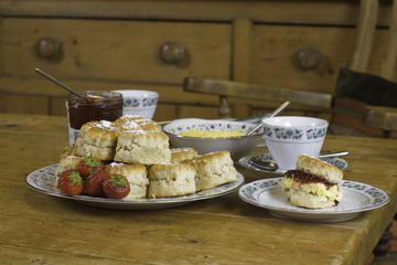 Afternoon Tea in London - Tours, Trips & Tickets - London Travel Recommendations | Viator.com