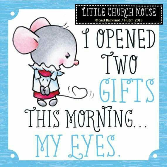 ❀ I opened two gifts this morning...My Eyes...Little Church Mouse ❀