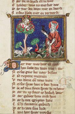 Moïse et le buisson ardent   Images Bible : Les Images de la Bible