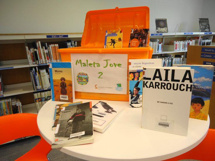 MALETA JOVE. Tres maletes amb lectures i llibres de coneixement per als joves