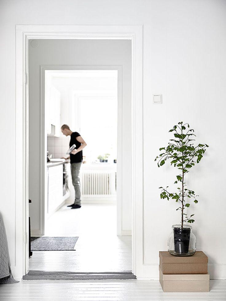 Gastronomic explorations. #home #interiordesign