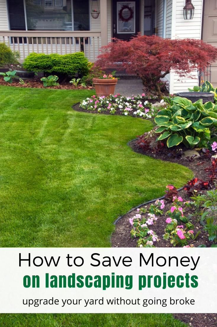 Frugal Landscaping Ideas How To Upgrade Your Yard On A Budget Small Front Yard Landscaping Front Yard Landscaping Simple Front Yard Landscaping Design