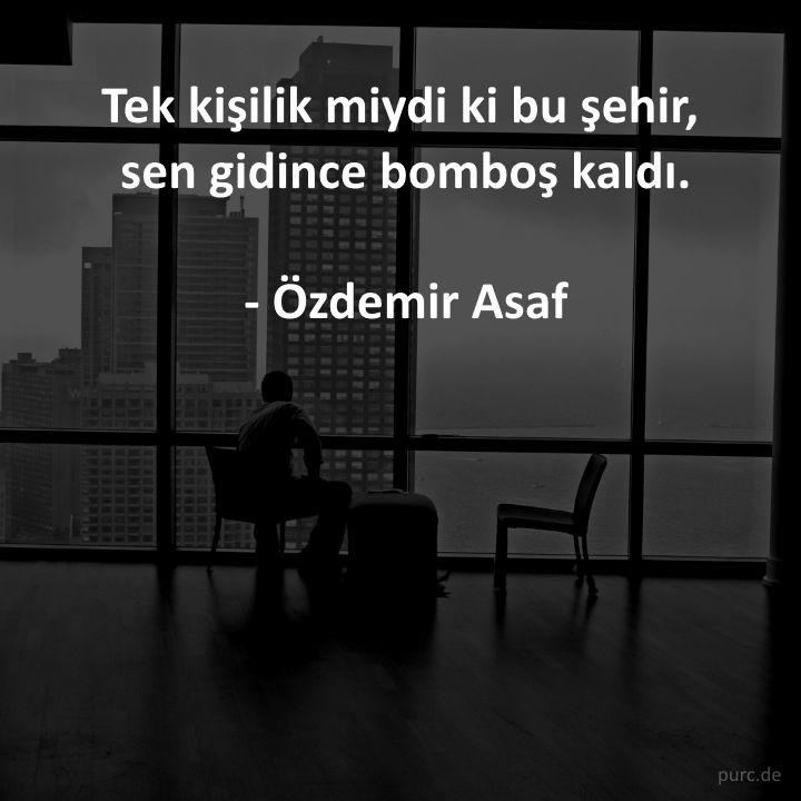 ~ Özdemir Asaf