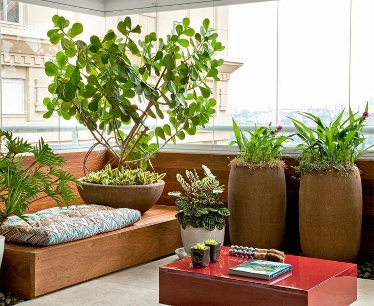 Pflanzen In Pflanzkübeln Auf Dem Balkon Und Holz Sitzbank