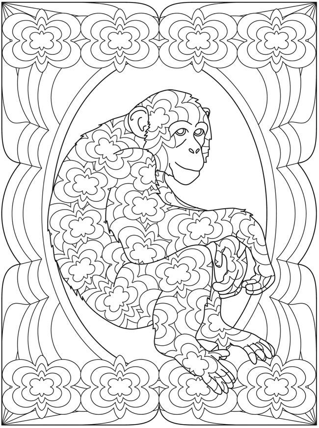 185 best Animaux images on Pinterest Coloring books Drawings