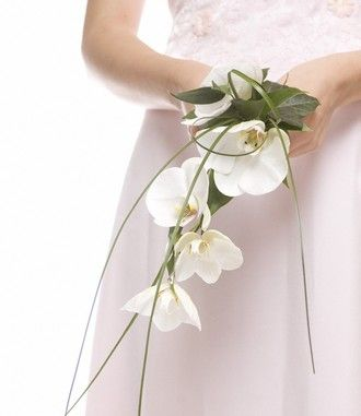 An exquisitely simple and delicate wired wedding bouquet featuring white Phalenopsis orchids with greenery and trailing grasses.