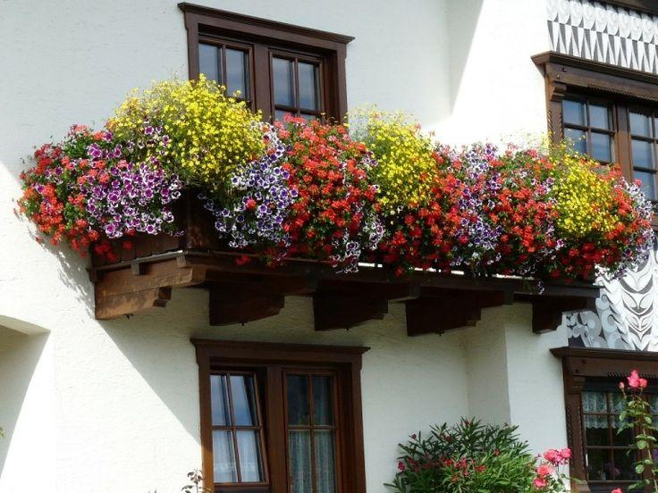 8 best images about zomerse bloembakken on pinterest for Balkon bloembak