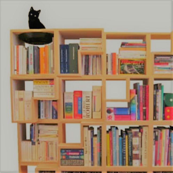 Bücherregal gezeichnet  Die besten 25+ Bücherregal organisieren Ideen auf Pinterest ...