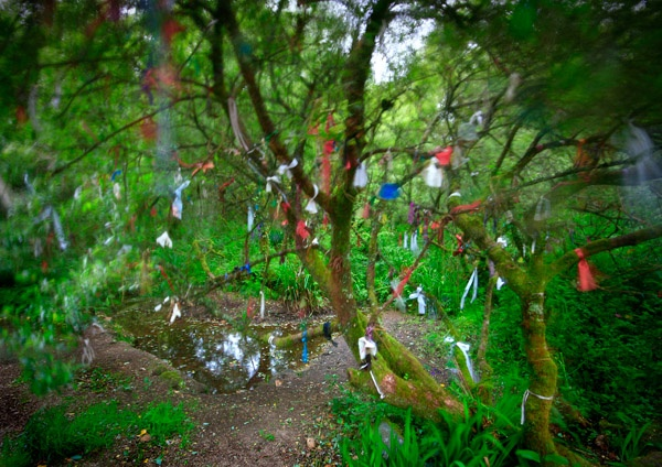 madron well. a very ancient sacred site in west cornwall. to this day, visitors to the spring tie coloured rags & ribbons to the trees as offerings.