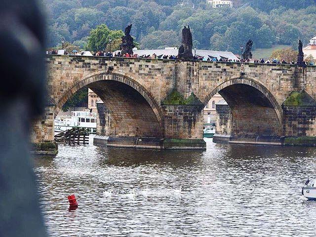 Puentes famosos #charlesbridge #Prague by (tenozhmachete) praguetoday #ig_prague #igersczech #igersprague #travelblogger #vscoprague #prag #picoftheday #praga #travellig #travelgram #instapassport #tbt #prague #travel #instaprague #beautifuldestinations #praha #czechrepublic #praguestagram #czech #czechia #praguelove #mytravelgram #instatravellig #visitcz #charlesbridge #wonderful_prague #meetingprofs #eventprofs #travel #tourism #popular #trending #trendy #twitter #facebook #website…