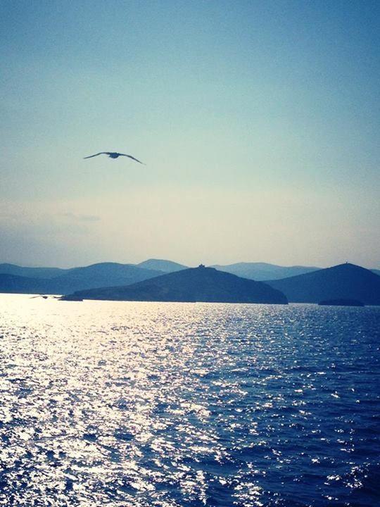 Sailing to Evia, Porto Bufallo . Greece