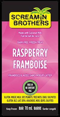The Screamin Brothers Raspberry Bar - a delicious coconut milk frozen treat! #DairyFree #GlutenFree #CoconutMilk #ScreaminBrothers