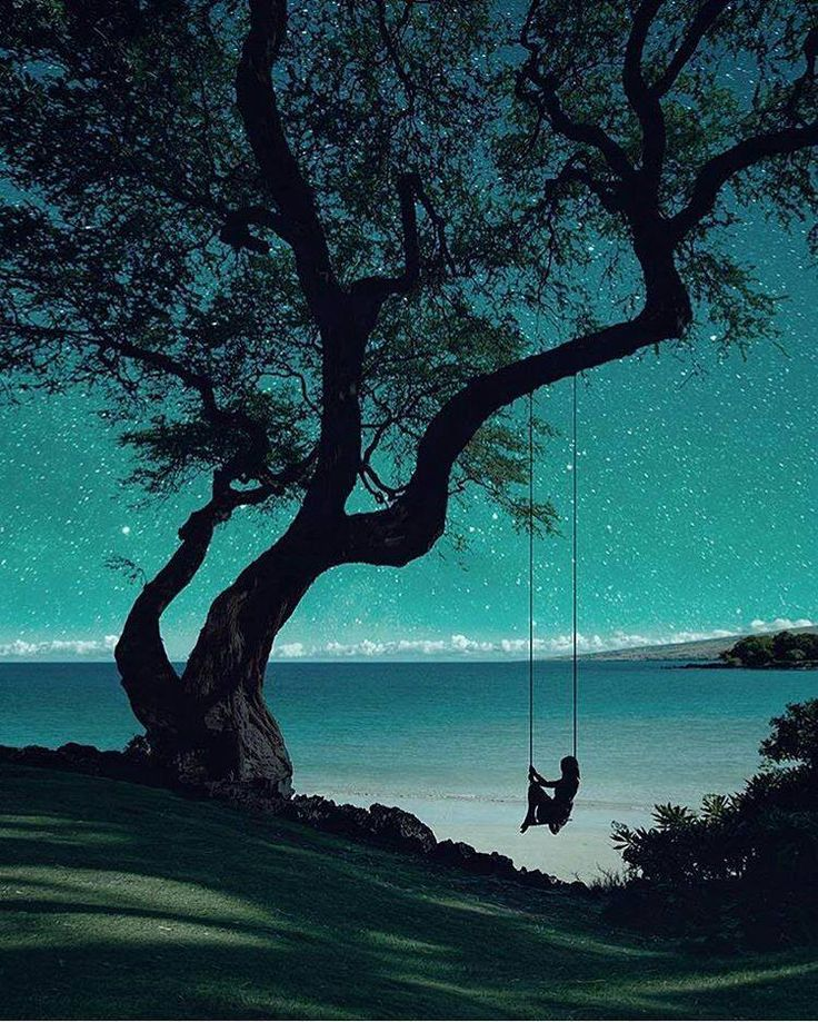 A peaceful swing among the Stars ...