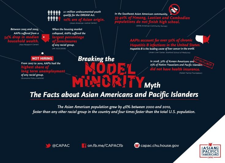 Asian american diversity essay