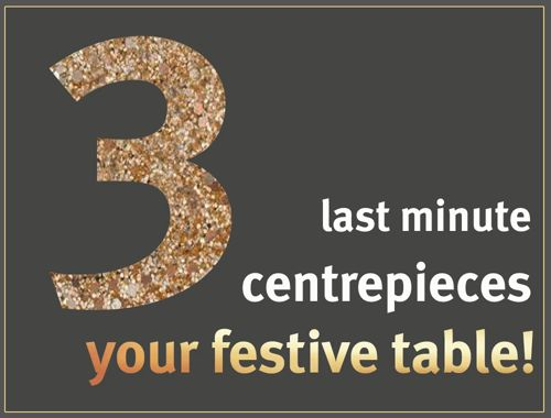 Guests coming for lunch? Run out of time to decorate? Here are 3 last minute centrepiece ideas for your Christmas table!   #XmasTable #centrepieceIdeas #EasyWOWfactor #celebrate #GJNSW https://video.buffer.com/v/5674705f59ae602c73504831
