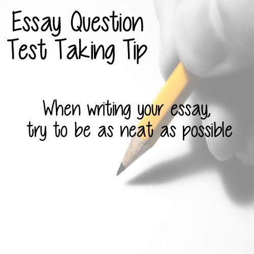 see test essay question