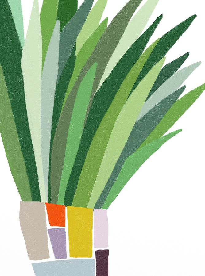 Desafinado: pot plant by Ophelia Pang.  Great inspiration for a collage.