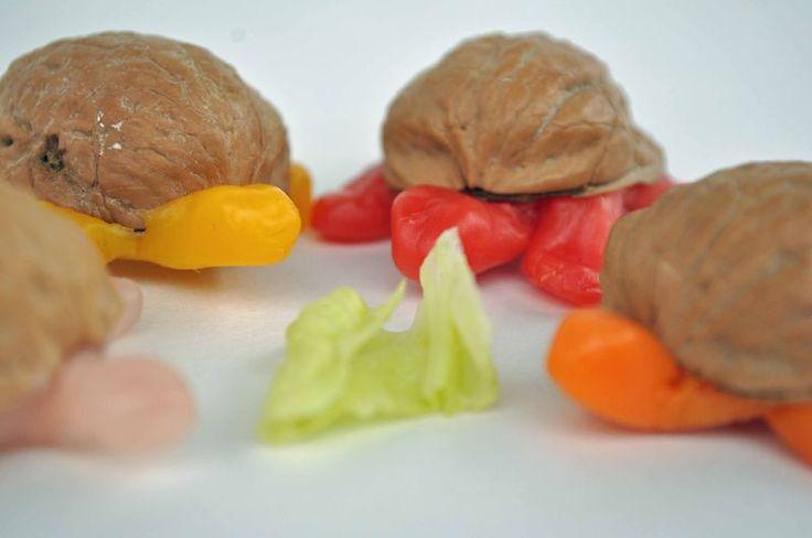 Beeswax and walnut turtles