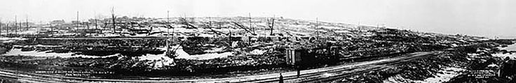View from the waterfront looking west from the ruins of the Sugar Refinery across the obliterated Richmond District several days after the e...