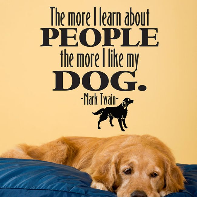 I Love My Dog Quotes Inspiration 35 Best Dog Quotes Images On Pinterest  Doggies Animal Quotes