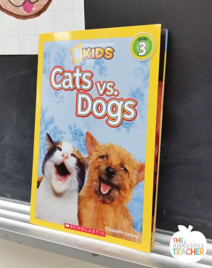 persuasive essay about dogs and cats