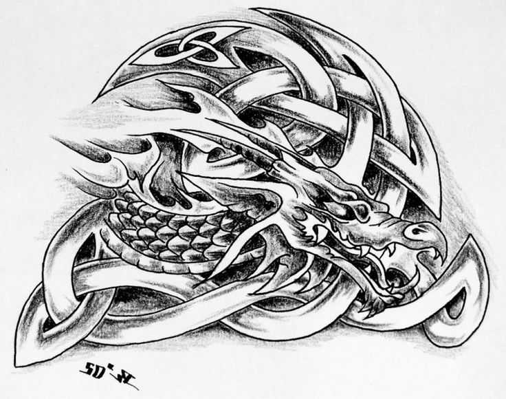 17 best ideas about celtic dragon tattoos on pinterest celtic dragon dragon tattoos and. Black Bedroom Furniture Sets. Home Design Ideas