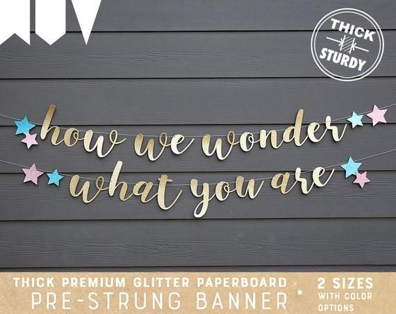 Gender Reveal Banner How We Wonder What You Are Banner Gender Reveal Ideas Twinkle Twinkle Little Star Rustic Baby Shower Decorations