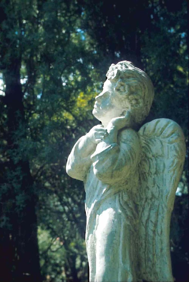 stone angel essay best images about michael statue of angel and  best images about angels a christmas angels 17 best images about angels a 4 christmas angels