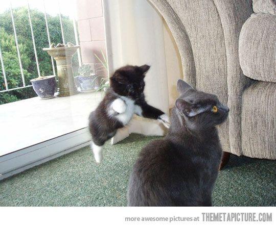 sneak attack!