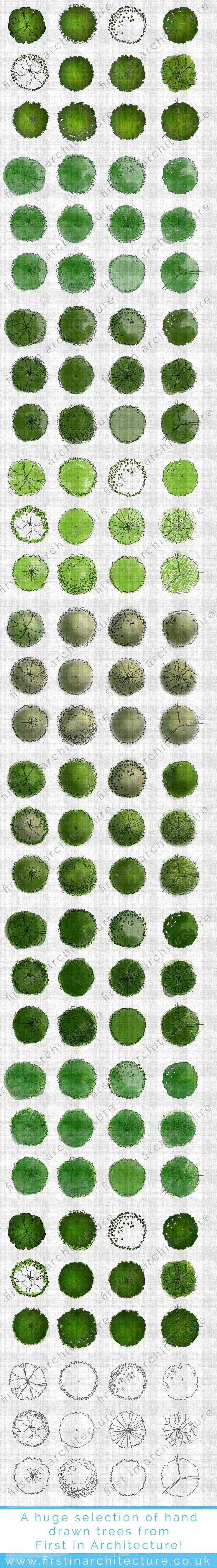 FIA Hand drawn Trees