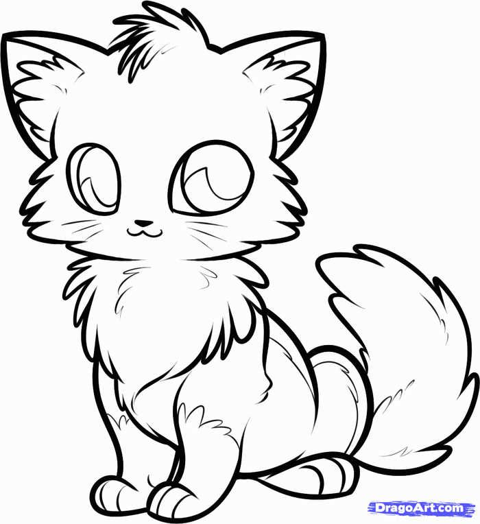 Cute Fox Coloring Pages Ideas For Kids Cute Fox Drawing Fox