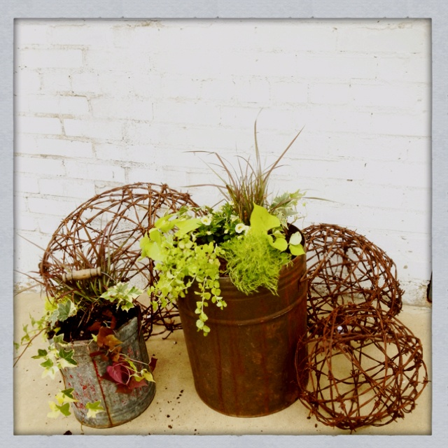 Re-purposed gas can and minnow bucket for plant containers, going to use these for table centerpieces. Rusted barb wire balls for hanging pendant lights.