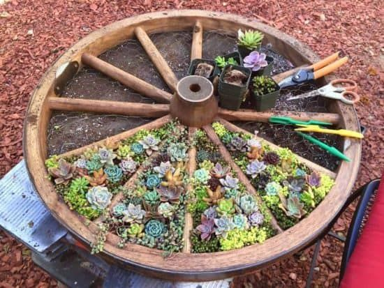 Cute Wagon Wheel Design Herb Garden Easy DIY