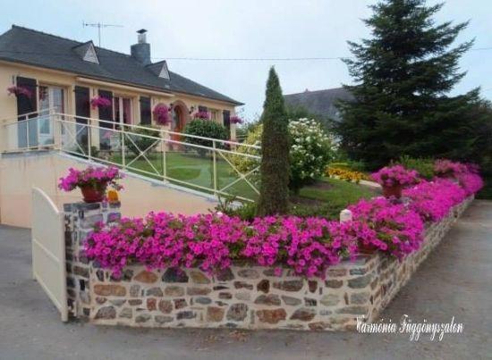 Gard zidit cu flori colorate plantate