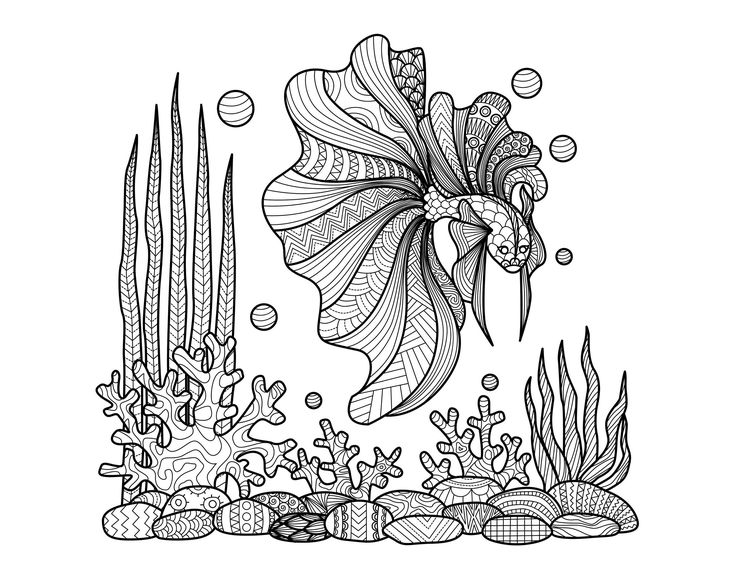 Free coloring page coloring-zentangle-fish-on-corals-by-bimdeedee. Fish on corals, by Bimdeedee (123rf.com)