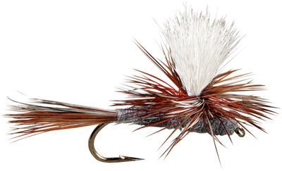 Montana Fly Company Para Adams Flies - 12 Pack - #14