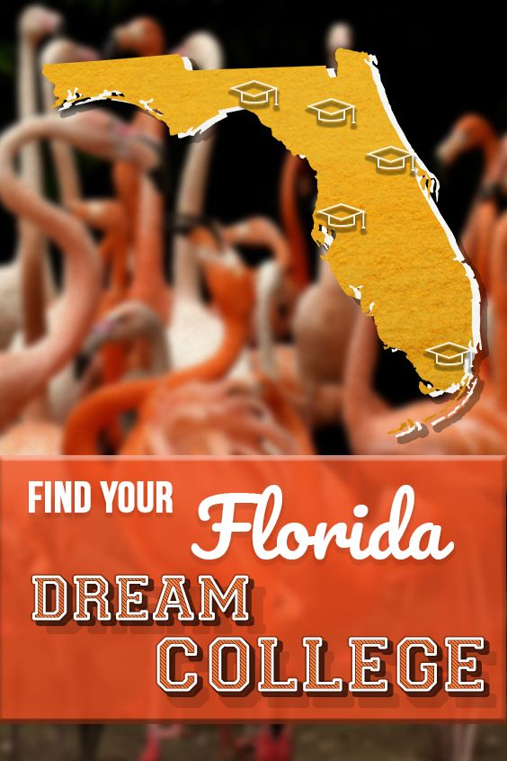 University Of Florida Academic Calendar.Find Your Dream College With Help From Plexuss Sign Up To Compare